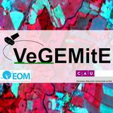 vegemite_logo_square
